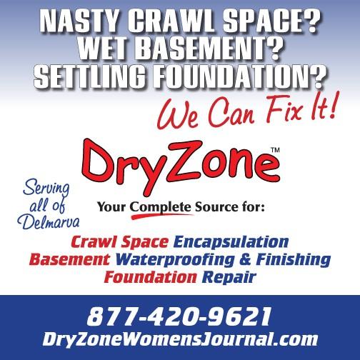 dryzone_ad_amj14