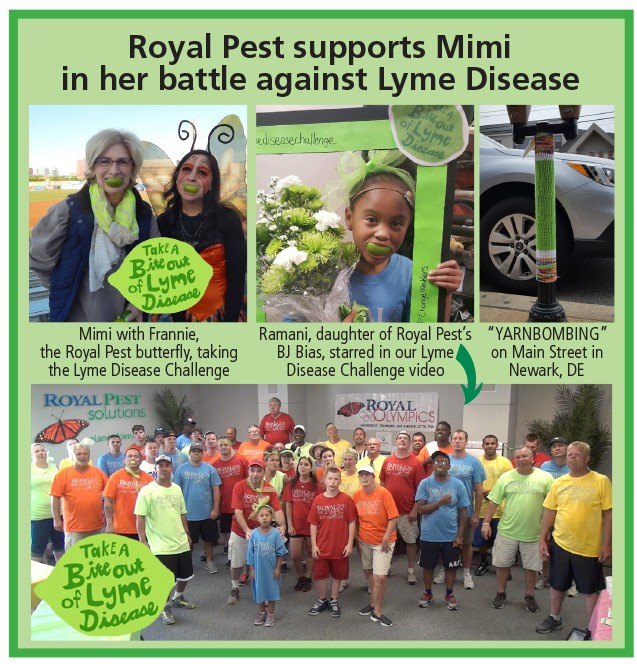 royal_pest_ad_jfm17