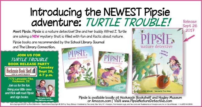 pipsie turtle