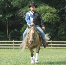 centaur_horse_rider_as11