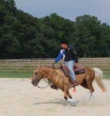 centaur_riding_horse_as11