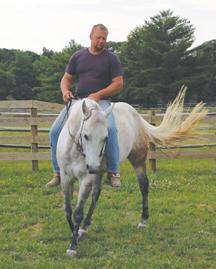 centaur_white_horse_as11