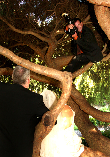royal_photog_Roy_in_tree_am11