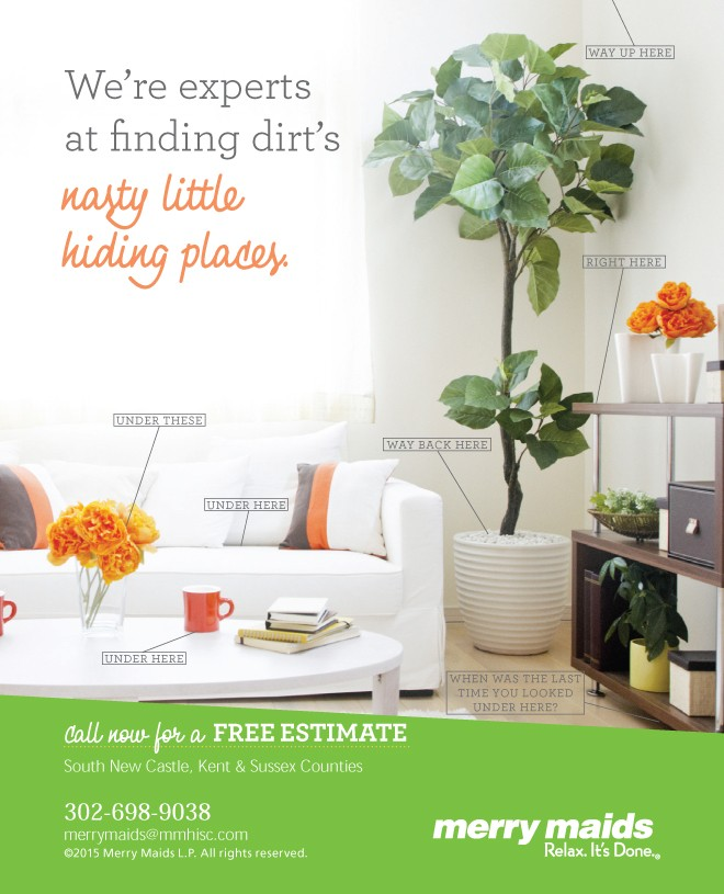 Get The Inside Dirt On Spring Cleaning!