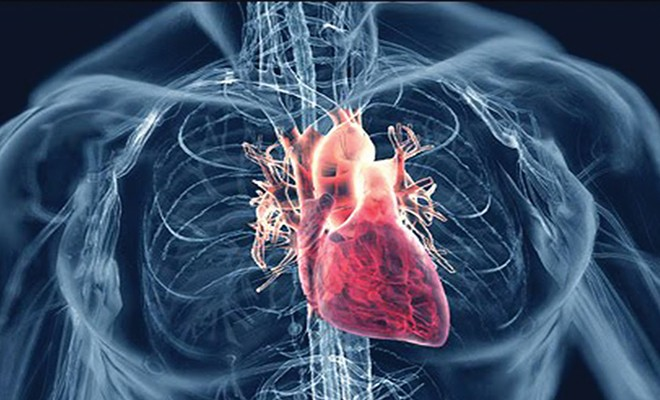 Functional Medicine & Matters  Of The Heart