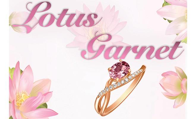 sayers_jfm18_lotus_garnet
