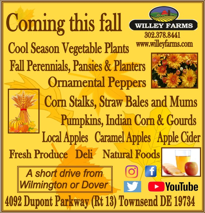 Destination . . . Willey Farms! – Shop Local!, The Women's Journal