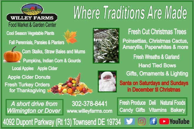 Your Destination During The Holidays Willey Farms!