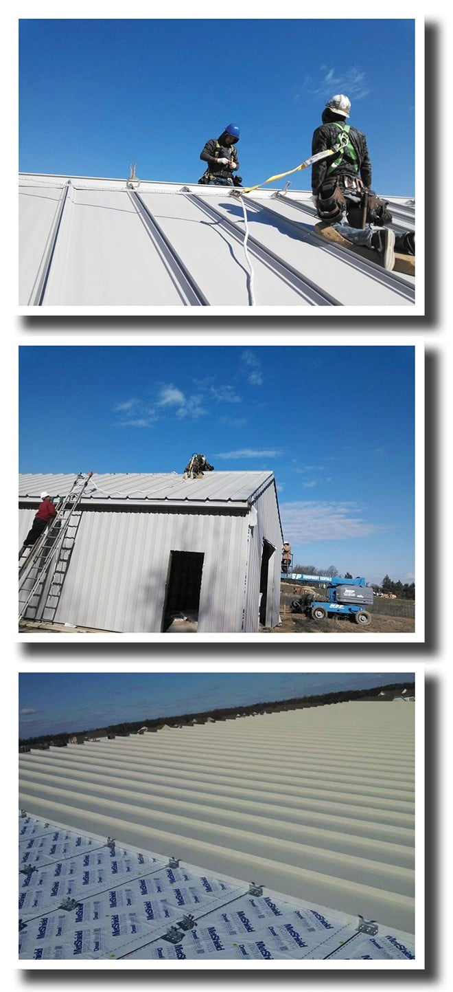 The Difference Between A Shingle Roof & A Metal Roof, The Women's Journal